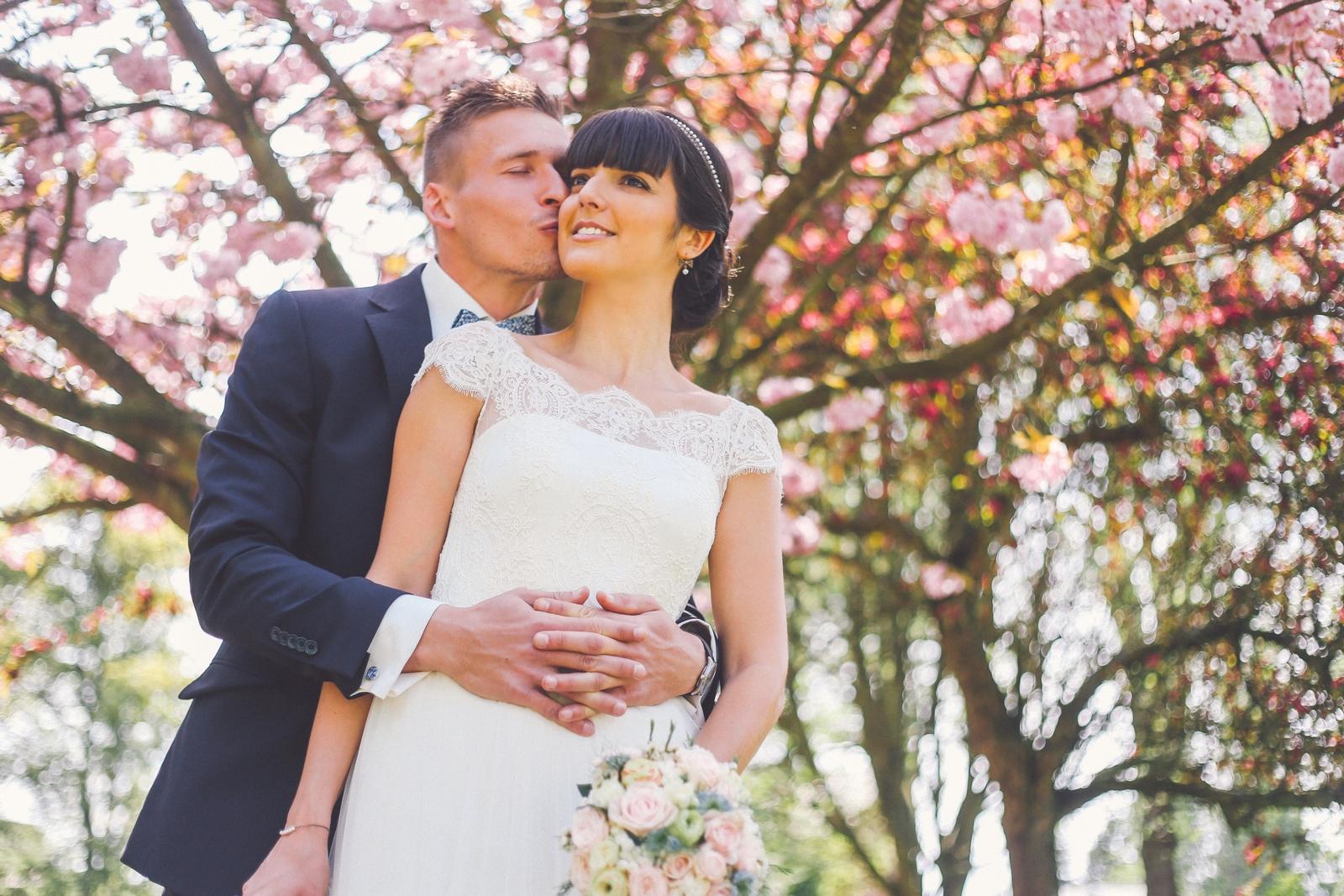 mariés cerisier en fleurs